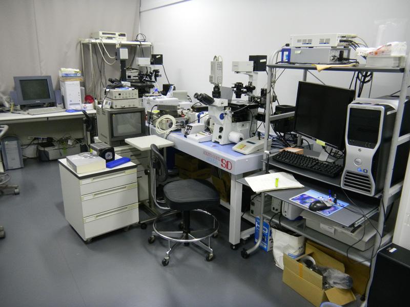 microscopy1.jpg